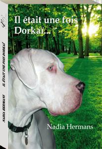 Couverture d'ouvrage: Il était une fois Dorkaï